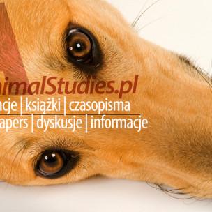 Studia nad zwierzętami - AnimalStudies.pl